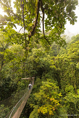 Gunung Mulu National Park, Borneo, Malaysia