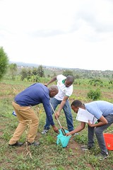 Project Staff from World Vision Rwanda takign soil samples analysis of soil organic carbon and other land degradation indicators.