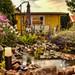Gartenhaus in unserem Garten!