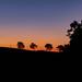 Marisa Bonetti_tramonto.jpg