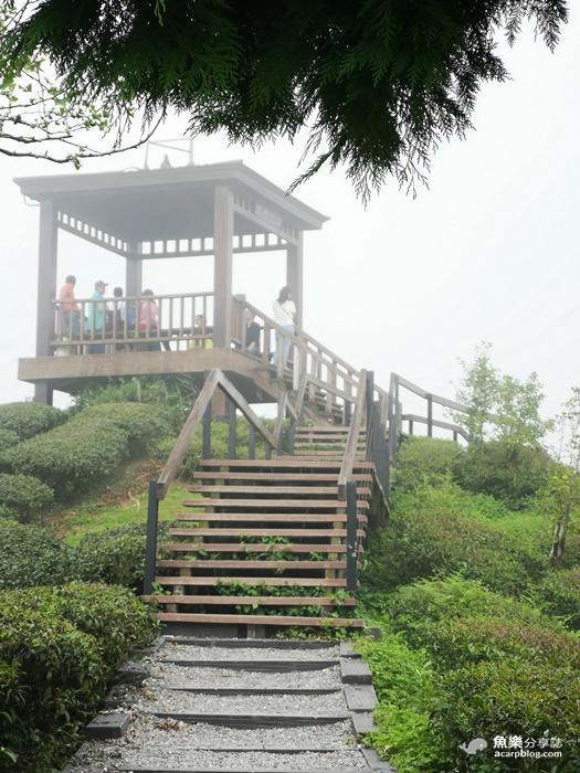 【南投旅遊】鹿谷一日遊|消暑景點 秘境小旅行 @魚樂分享誌