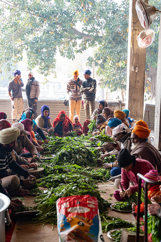 Amritsar India - Febuary 8, 2020: Volunteers help prepare food in the free kitchen (Langar) at Sikh Golden Temple (sri harmandir sahib)