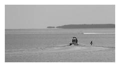 Anglų lietuvių žodynas. Žodis waterskiing reiškia n slidinėjimas ant vandens lietuviškai.