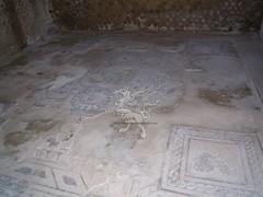 Complesso Archeologico di Baia (Terme)_18