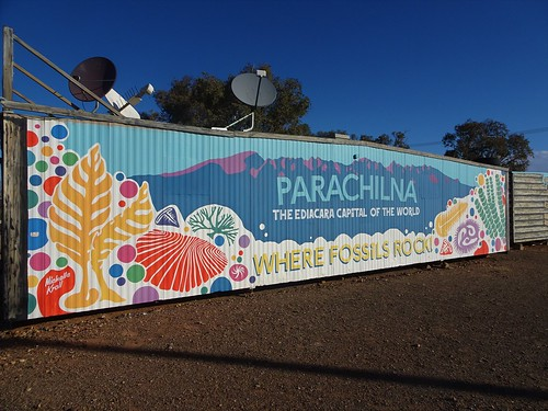 Parachilna in the Flinders Ranges. A colourful wall mural highlights the town's claim to fame. The Ediacaran fossils the earliest multicelled life on earth.