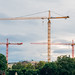 Large tower cranes blocking the view of the sky in an urban setting