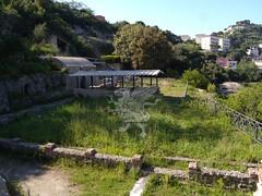 Complesso Archeologico di Baia (Terme)_29