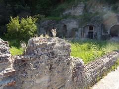 Complesso Archeologico di Baia (Terme)_28