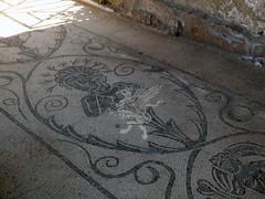 Complesso Archeologico di Baia (Terme)_35