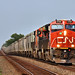 1/3 CN 3150 Leads WB Grain Richter, KS 7-17-20