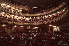 ©AnaViotti_BRUNO PERNADAS-9