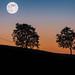 La luna sull'Eremo