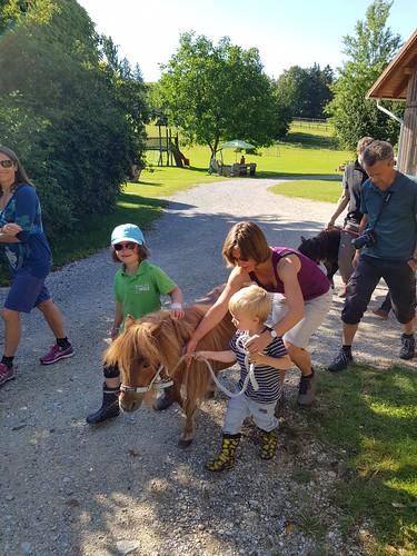 Auf zur Ponywanderung