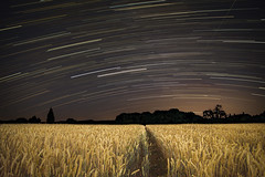 Photo of A Somerset Night Sky