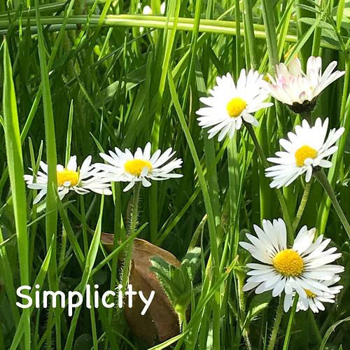 Louise Fogarty - SIMPLICITY -F8E557C4-4FE2-43E5-B519-6CACD574A53F