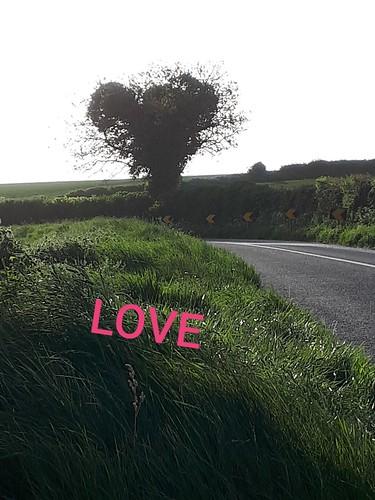 Melanie Devine - LOVE -20200522_070847