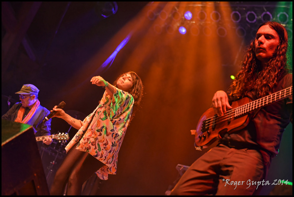 Thievery Corporation images