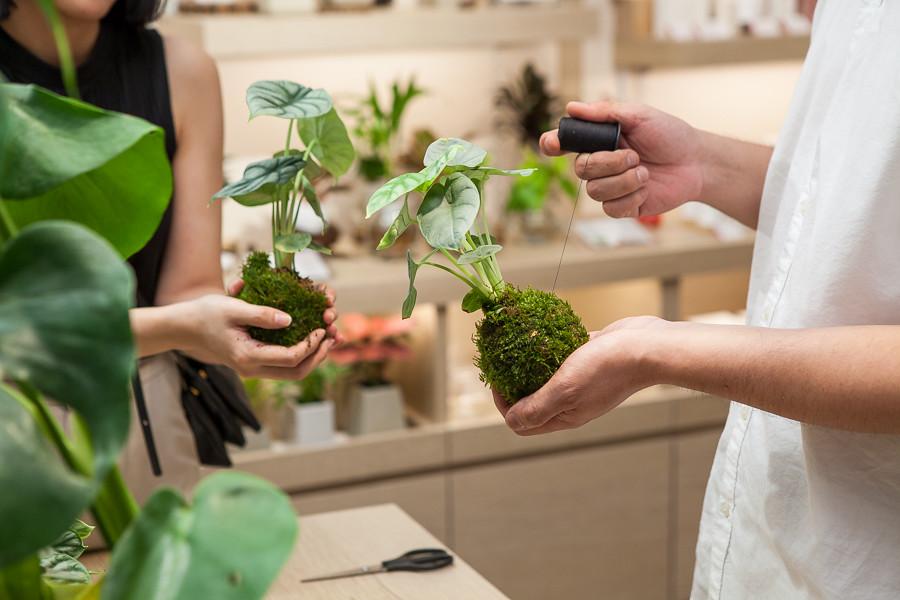 誠品生活expo BEAUTY|8月中起將不定期舉辦體驗課程,邀民眾品茗、手作調香、植栽創作等放鬆身心靈的課程。