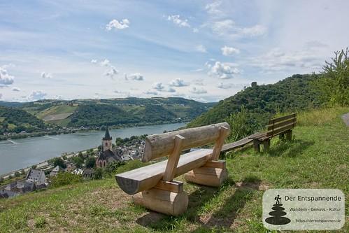 Blick auf Lorch - Wisper-Trail bei Lorch: In Vino Veritas