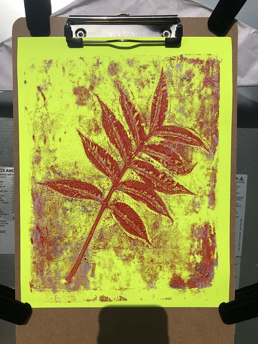 """Gelli Botanical Muxed Media Collages • <a style=""""font-size:0.8em;"""" href=""""http://www.flickr.com/photos/57802765@N07/50142747696/"""" target=""""_blank"""">View on Flickr</a>"""