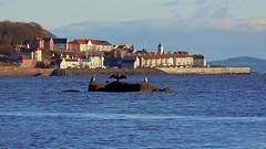 Photo of West Wemyss, Fife