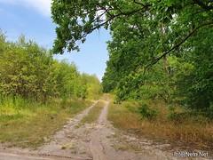 Липень на Київщині 35  Ukraine  InterNetri