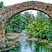 Puente Romano sobre el Sella