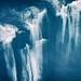 Flying Jellyfishes