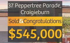 37 Peppertree Parade, Craigieburn VIC