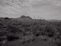 Big Bend Ranch State Park 2013