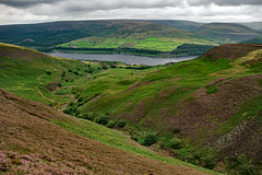 Wild Boar Clough & Torside Reservoir