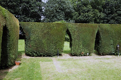 Photo of Jolly Tanners  Beer garden hedge arches at Staplefield, West Sussex, England 2