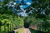 Viaduct Towards Holcombe