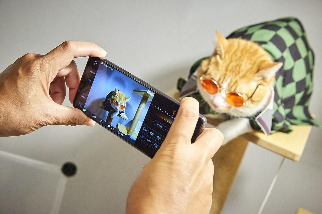 圖說三、Xperia 1 II帶來動物眼即時眼部追蹤對焦功能,搭配高速連拍,輕鬆拍下寵物玩耍的瞬間,甚至連毛流都能清晰捕捉!(5)