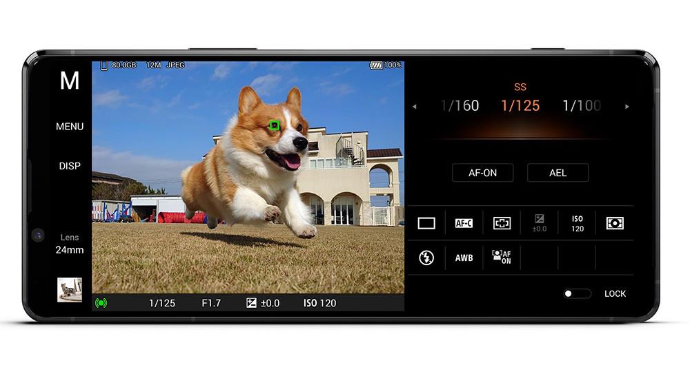 圖說一、Xperia-1-II為全球首款具備動物眼即時眼部追蹤對焦功能的手機,為拍攝寵物而生!(1)