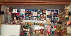 General store or mini Mart work in progress