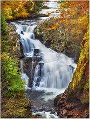 Photo of Autumn colours, Reekie Linn, near Alyth, Scotland.