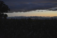 Photo of Redhill sunset 310720_DSC8532