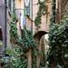 Vicolo degli Orefici, Siena, Tuscany, Italy