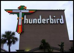Giant Neon Thunderbird