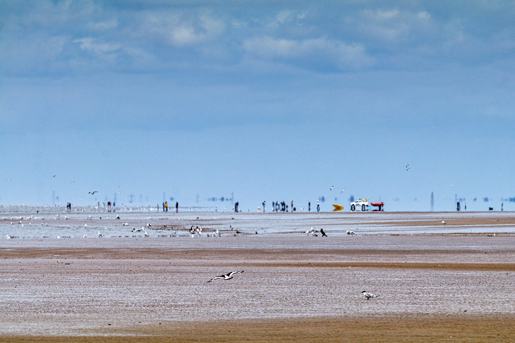 My hazy view of the beach at Formby Point
