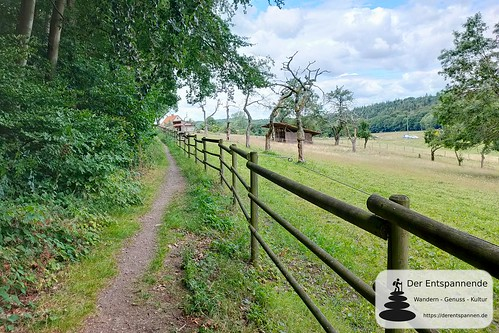 Kastanienweg am Donnersberg