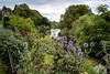 Total Buzz riverside garden