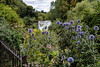 Total Buzz riverside garden 2