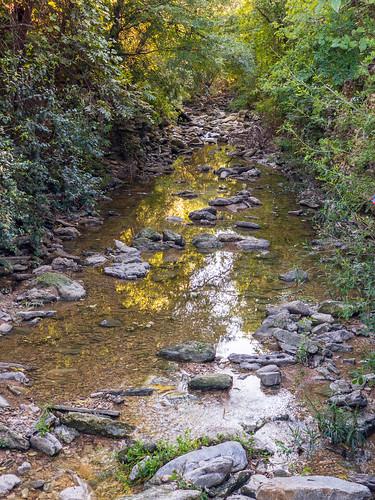 West Bouldin Creek Greenbelt