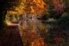 Autumn mood Stratford upon Avon Canal ort_kb