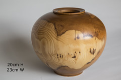 English Yew.   ...Hollow Vessel