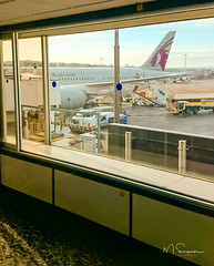 Photo of Outward Journey (via Qatar) 2014-Nov15  12-44  20141115_12-44_dsc_0335