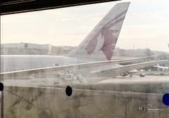Photo of Outward Journey (via Qatar) 2014-Nov15  12-45  20141115_12-45_dsc_0336