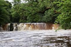 Photo of Linn Park Waterfall 2